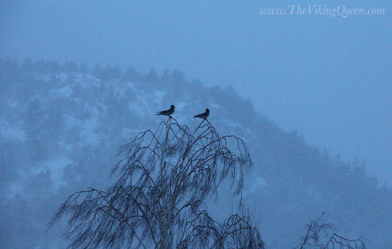 winter solstice - photo #34